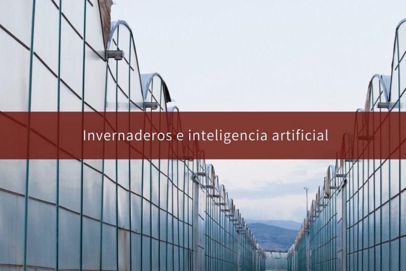invernaderos-e-inteligencia-artificial-alambres-y-refuerzos02
